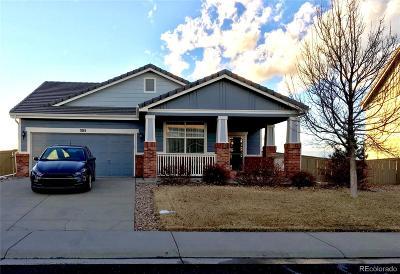 Castle Rock Single Family Home Active: 305 Ellendale Street