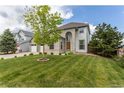 Castle Rock Single Family Home Active: 953 Millbrook Circle