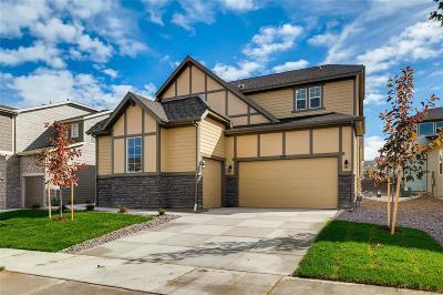 Erie Single Family Home Active: 947 Sundance Lane