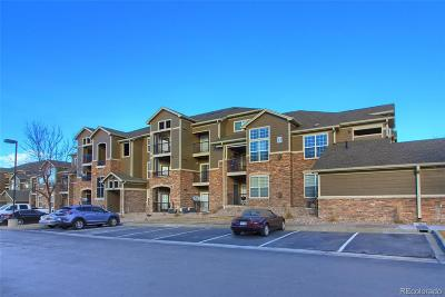 Erie Condo/Townhouse Under Contract: 3095 Blue Sky Circle #13-205