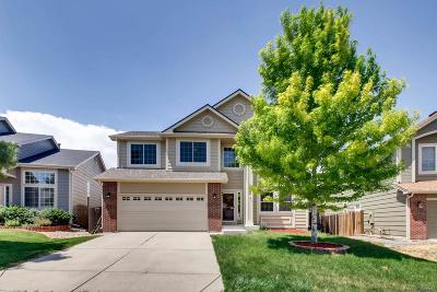 Castle Rock Single Family Home Active: 707 Hampstead Avenue