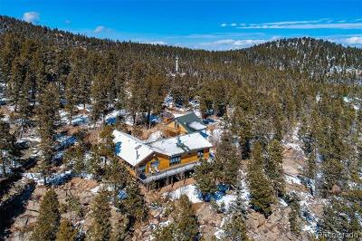 Conifer Single Family Home Active: 11625 Blackfoot Road