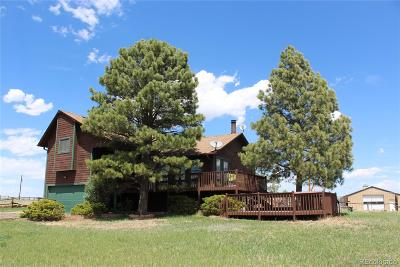 Elizabeth Single Family Home Active: 35308 Welch Trail