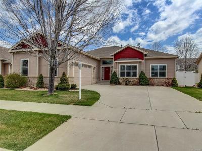 Frederick Single Family Home Under Contract: 9032 Shenandoah Avenue