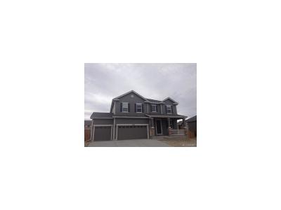 Cobblestone Single Family Home Under Contract: 7360 Blue Water Drive