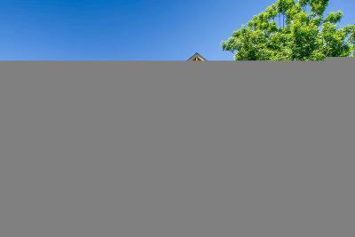 Littleton Single Family Home Active: 7685 Verandah Court