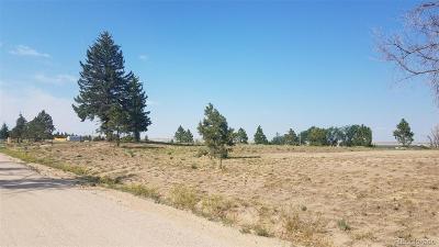 Elbert County Residential Lots & Land Active: 619 Pueblo Avenue