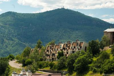 Steamboat Springs Condo/Townhouse Active: 1800 Burgess Creek Road #102