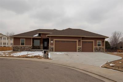 Adams County Single Family Home Active: 2252 Jeffrey Street