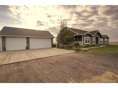 Hudson Single Family Home Active: 21884 County Road 10