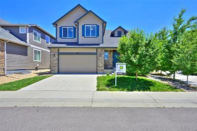 Denver Single Family Home Active: 1252 South Wabash Street