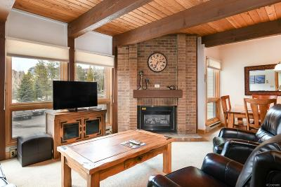 Steamboat Springs Condo/Townhouse Active: 2700 Village Drive #103E