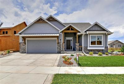 Timnath Single Family Home Active: 5207 Long Drive