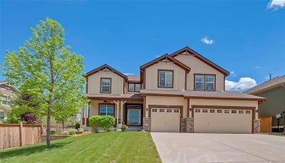 Parker CO Single Family Home Active: $625,000