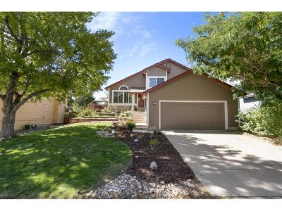Highlands Ranch CO Single Family Home Under Contract: $395,000