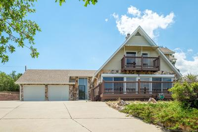 Castle Rock Single Family Home Active: 458 North Lorin Lane