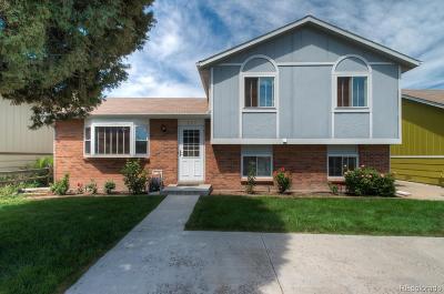 Denver Single Family Home Active: 839 South Leyden Street