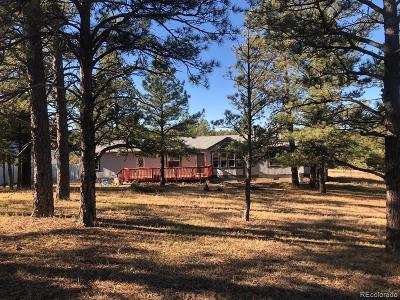 Elbert County Single Family Home Active: 24124 Agate Trail