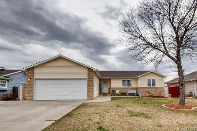 Firestone Single Family Home Under Contract: 542 Berwick Avenue