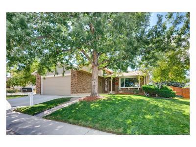 Arvada Single Family Home Under Contract: 7719 Everett Way