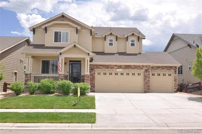 Parker Single Family Home Active: 12940 Coffee Tree Street