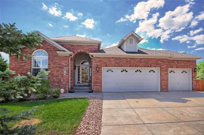 Briargate Single Family Home Under Contract: 8915 Rockmont Terrace