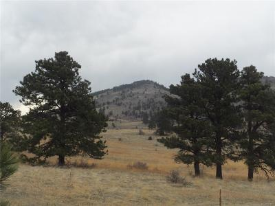 Evergreen Residential Lots & Land Under Contract: Snowy Ridge Road