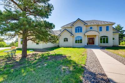 Monument Single Family Home Active: 17825 Sunburst Drive