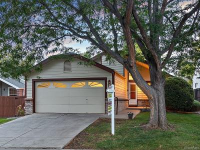 Littleton Single Family Home Under Contract: 489 West Jamison Circle