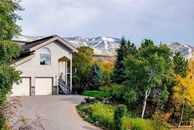 Steamboat Springs CO Single Family Home Under Contract: $1,100,000