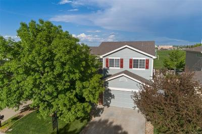 The Broadlands Single Family Home Under Contract: 13628 Plaster Circle