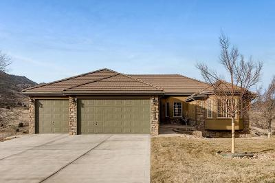 Morrison Single Family Home Under Contract: 16695 Singletree Court
