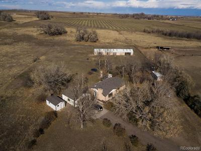Fort Lupton Single Family Home Under Contract: 17609 County Road 14