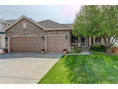 Parker Single Family Home Under Contract: 20715 Omaha Avenue