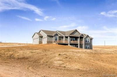 Elbert County Single Family Home Active: 6413 Black Forest Drive