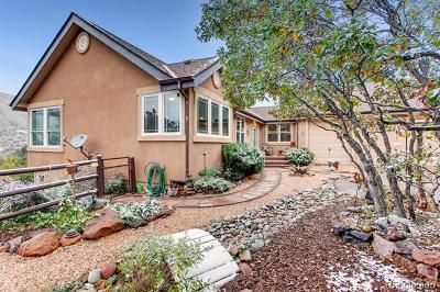 Palmer Lake Single Family Home Active: 147 Star View Circle