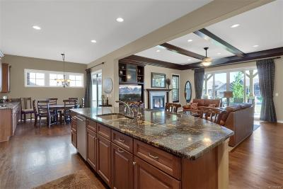Highlands Ranch Single Family Home Active: 289 Featherwalk Court