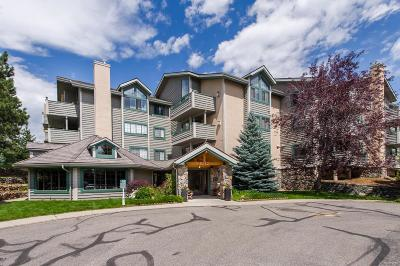 Evergreen Condo/Townhouse Under Contract: 31719 Rocky Village Drive #115