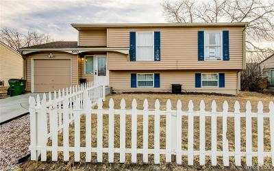 Colorado Springs Single Family Home Active: 4250 Morley Drive