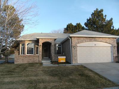 Highlands Ranch Single Family Home Active: 62 Canongate Lane