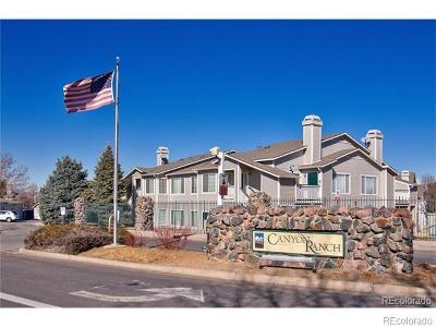 Highlands Ranch Condo/Townhouse Under Contract: 3845 Canyon Ranch Road #202