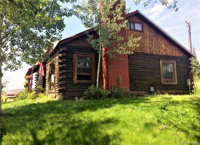 Steamboat Springs Single Family Home Active: 1565 And 1295 Conestoga Circle