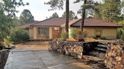 Castle Rock CO Single Family Home Under Contract: $885,000
