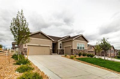 Castle Rock Single Family Home Active: 5640 Clover Ridge Circle