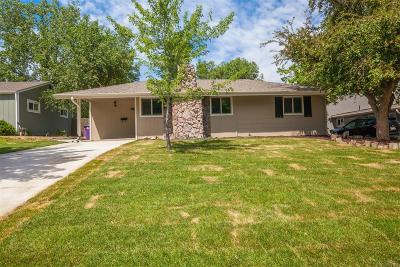 Denver Single Family Home Active: 1275 South Grape Street