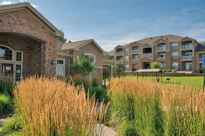Englewood Condo/Townhouse Active: 7440 South Blackhawk Street #13108