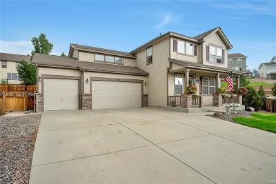 Castle Rock Single Family Home Active: 4102 Astrion Court