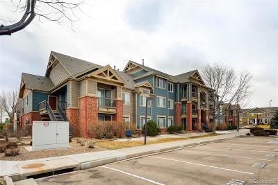 Longmont Condo/Townhouse Under Contract: 804 Summer Hawk Drive #11204