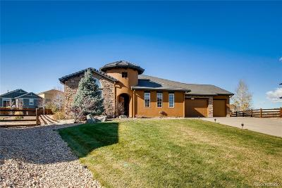 Arvada Single Family Home Active: 8949 Devinney Court