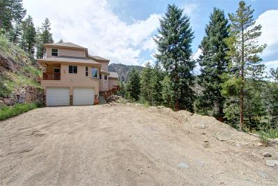 Evergreen Single Family Home Active: 900 Sawmill Creek Road